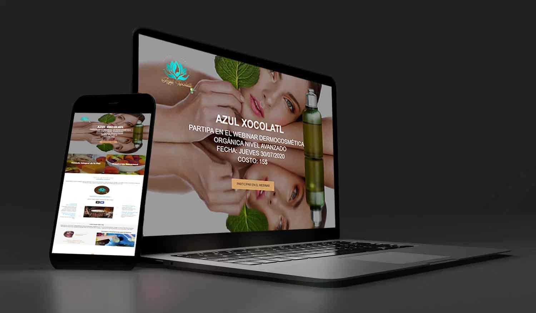 systemjosmar paginas web diseño ecommerce azul xocolatl